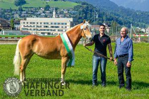 Miss Schweiz 9312