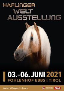 plakat wa 2021 1000